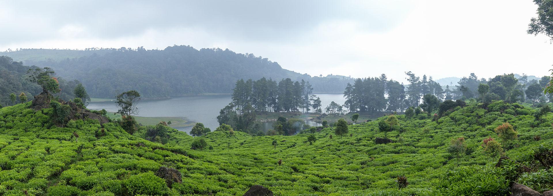 Patenggang_Lake_panorama,_Bandung_Regency,_2014-08-21